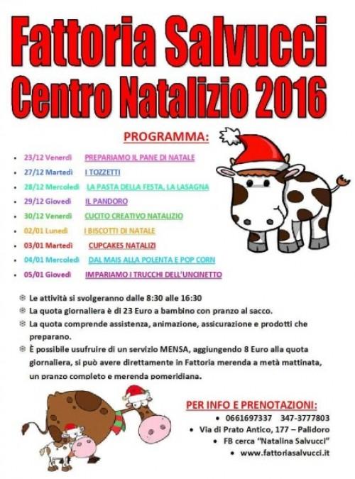 Centro Natalizio 2016!