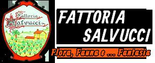 Fattoria Salvucci – Fattoria didattica e azienda agricola Palidoro