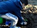 semina nell'orto