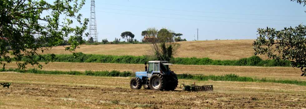 trattore-al-lavoro_slidejpg