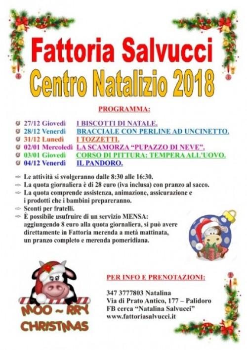 CENTRO NATALIZIO 2018/Apri la pagina