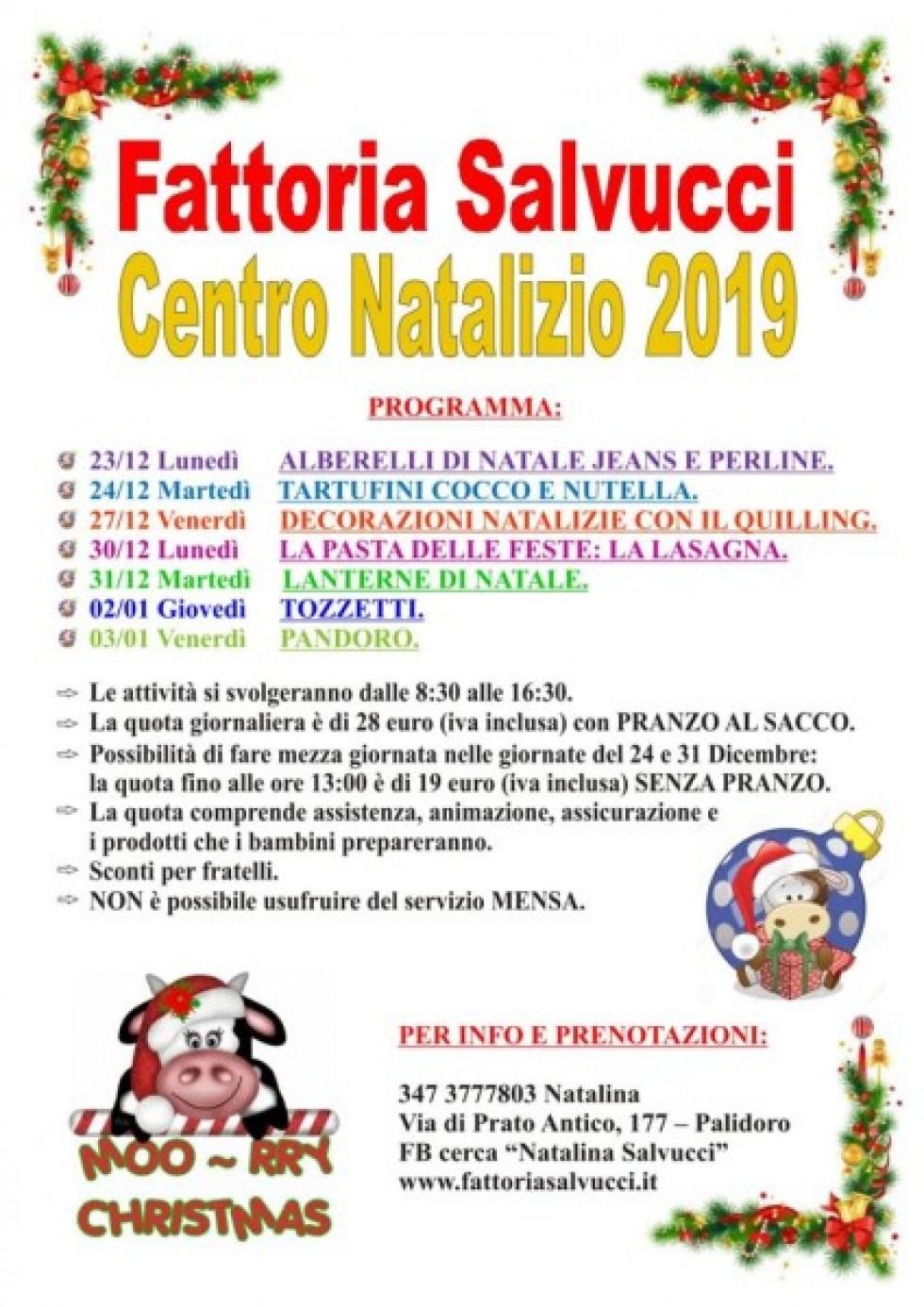 CENTRO NATALIZIO 2019/Apri la pagina