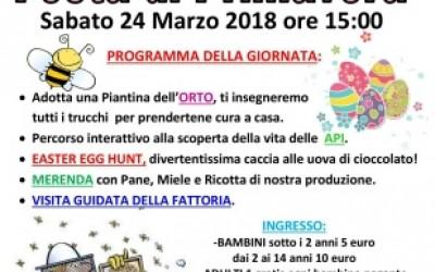 FESTA DI PRIMAVERA 2018 /Apri la pagina